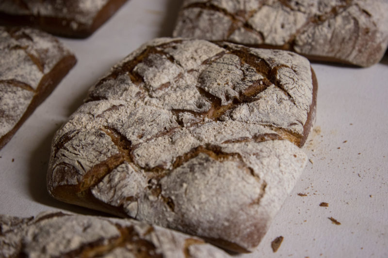Février Boulangerie (152)